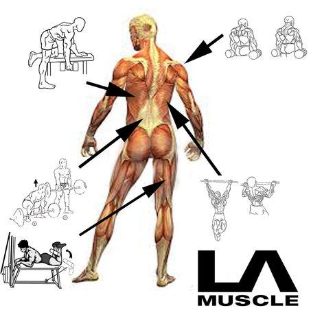 Advanced Exercises 2