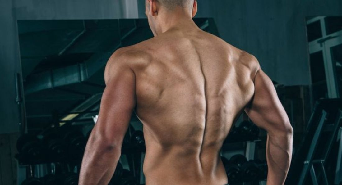 Try This Workout For Bigger Biceps And Back
