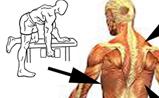 Basic-Advanced Exercise Chart