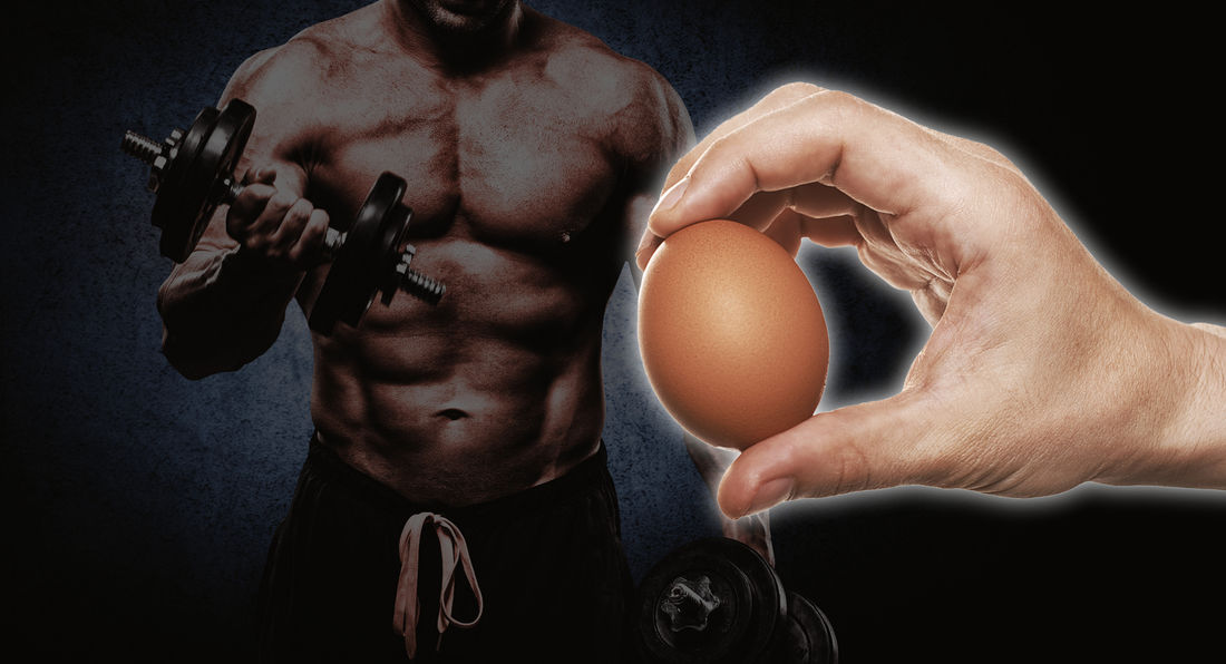 Why bodybuilders eat eggs!!