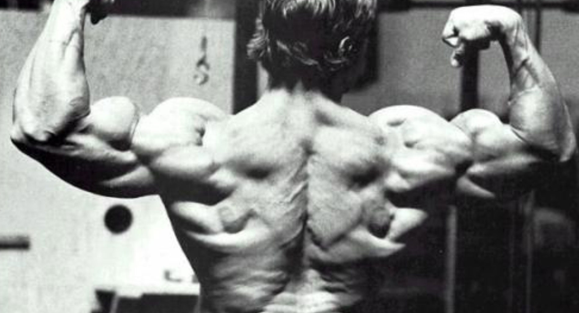 How to build a monster back