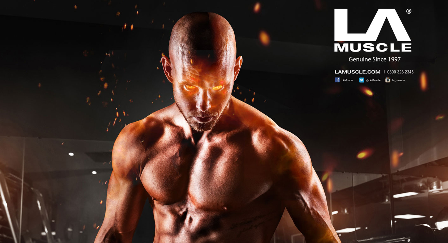 LA Muscle Adverts