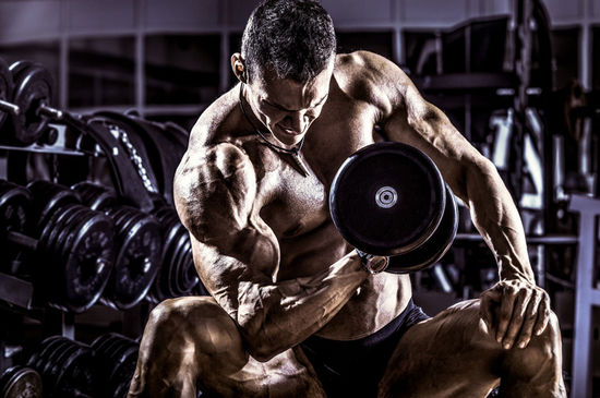 Nutrition is key to muscle size