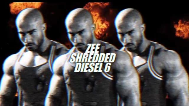 Shredded Diesel 6