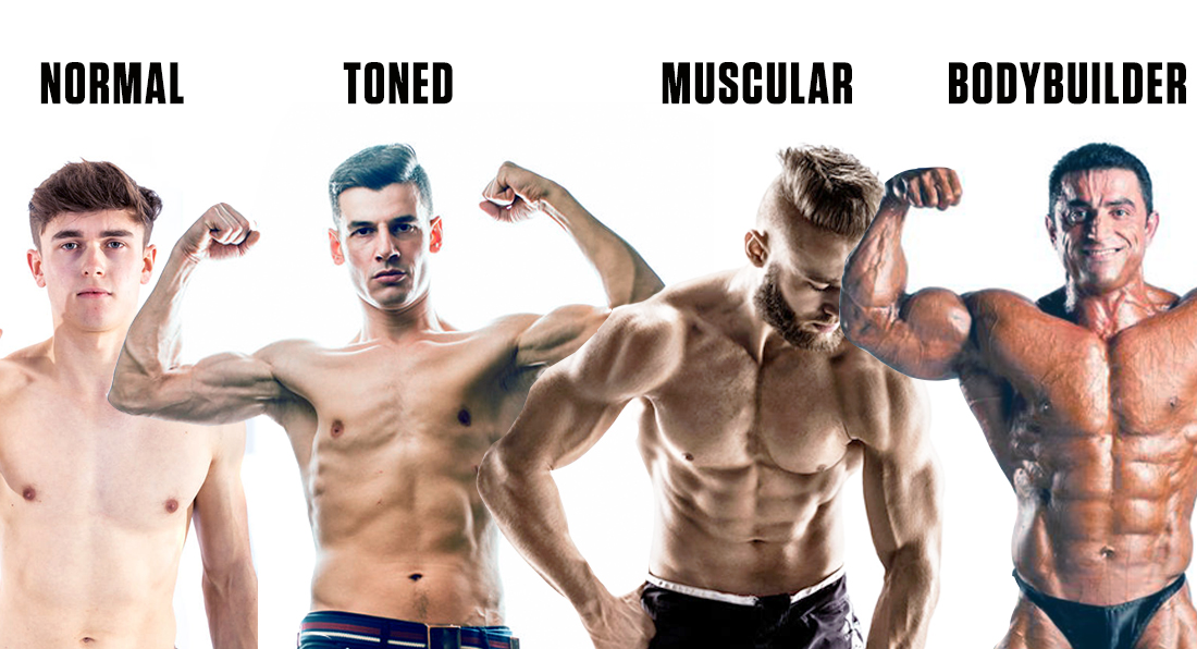 Body Types and Supplements